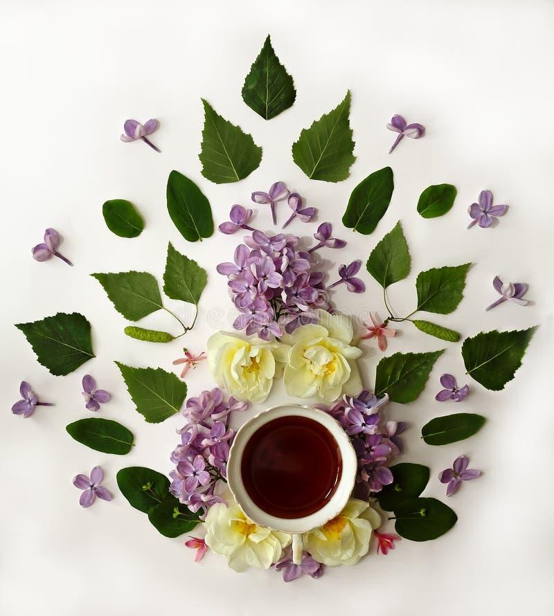 La tazza di tè con la molla fiorisce su fondo bianco fotografie stock libere da diritti