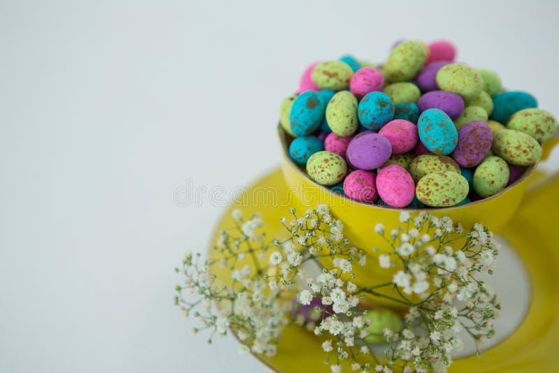 La tazza ha riempito di uova di Pasqua variopinte del cioccolato e di fiore bianco immagini stock libere da diritti
