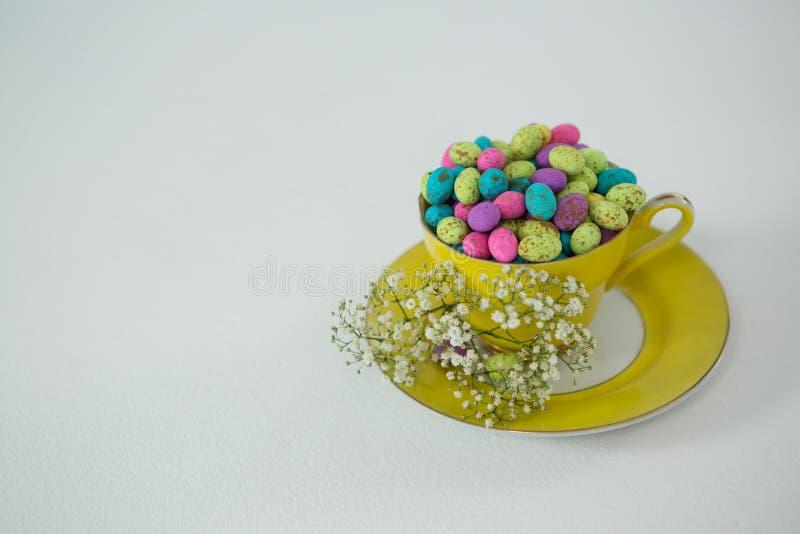 La tazza ha riempito di uova di Pasqua variopinte del cioccolato e di fiore bianco fotografia stock libera da diritti