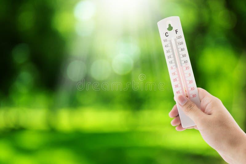 La température tropicale tenant la main sur le fond de nature photographie stock libre de droits