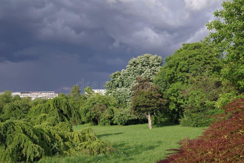 La tempête vient ! images libres de droits