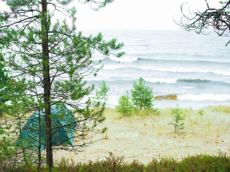 La tente se tient sur le rivage de la forêt laken images libres de droits