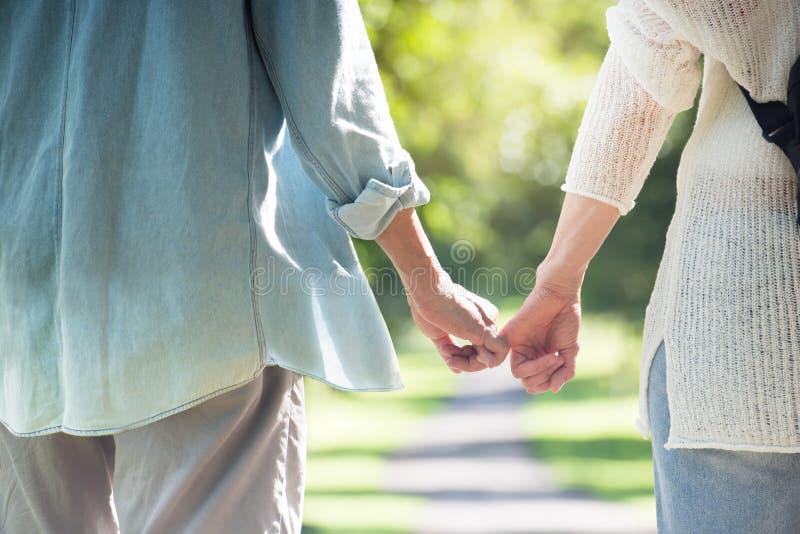 La tenuta anziana asiatica delle coppie consegna lo sfondo naturale immagine stock