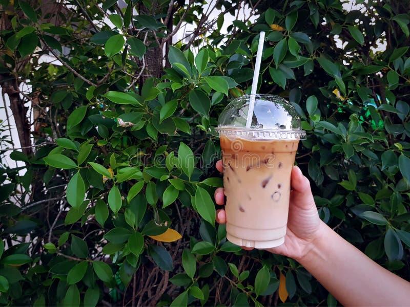La tenuta della mano ha ghiacciato il caffè del caffè espresso dal fondo delle piante verdi immagini stock