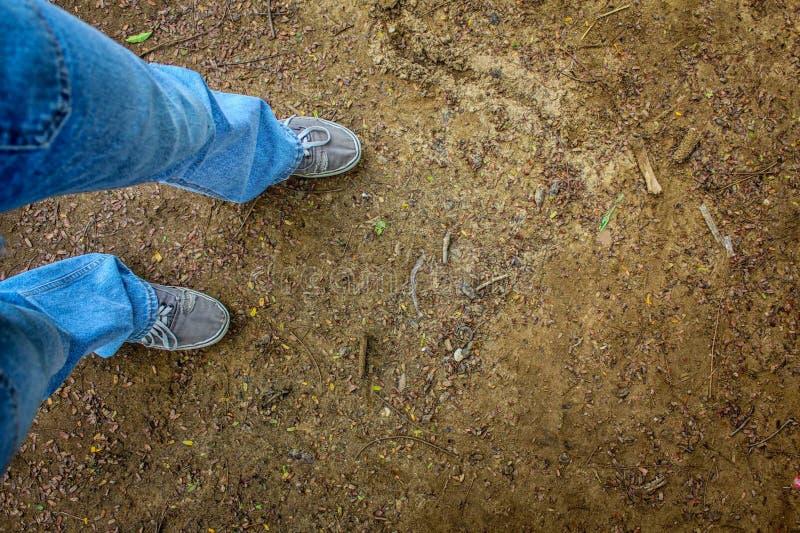 La terra nella foresta e gambe delle blue jeans d'uso della gente e delle scarpe da tennis bianche fotografie stock libere da diritti