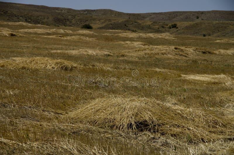 La terre agricole de vue dans la vallée du sud de Cappadocia image libre de droits