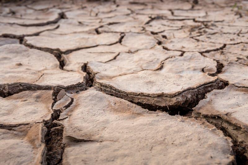 La terre criquée en été, réchauffement global photo stock