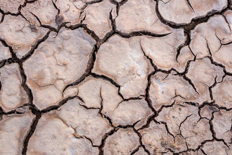 La terre criquée en été, réchauffement global photos stock