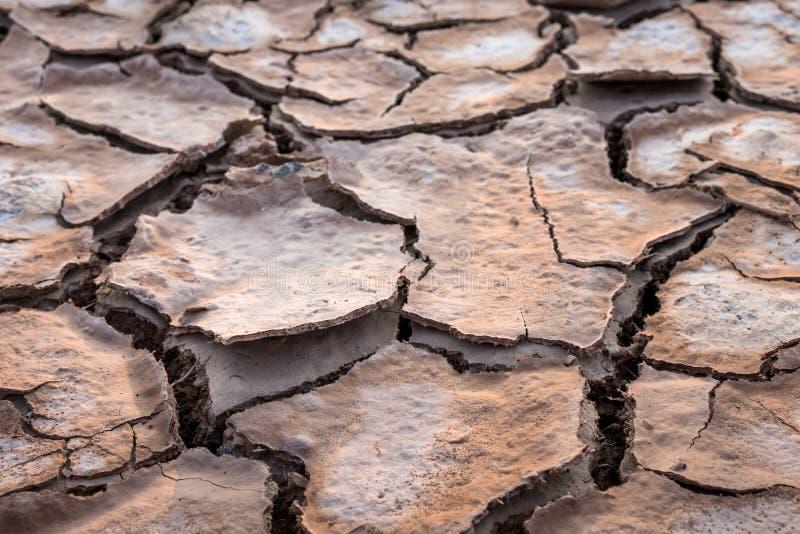 La terre criquée en été, réchauffement global image libre de droits