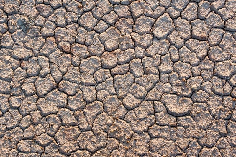 La terre criquée en été, réchauffement global photographie stock libre de droits