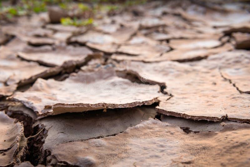 La terre criquée en été, réchauffement global images libres de droits