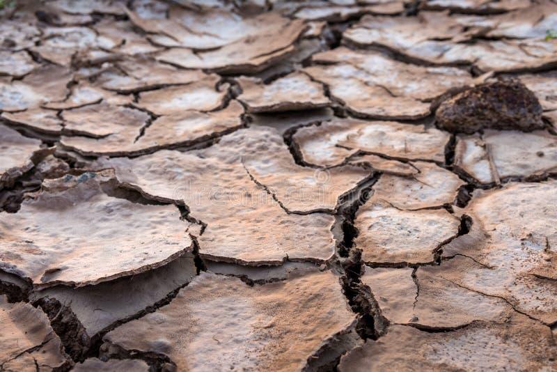 La terre criquée en été, réchauffement global photographie stock
