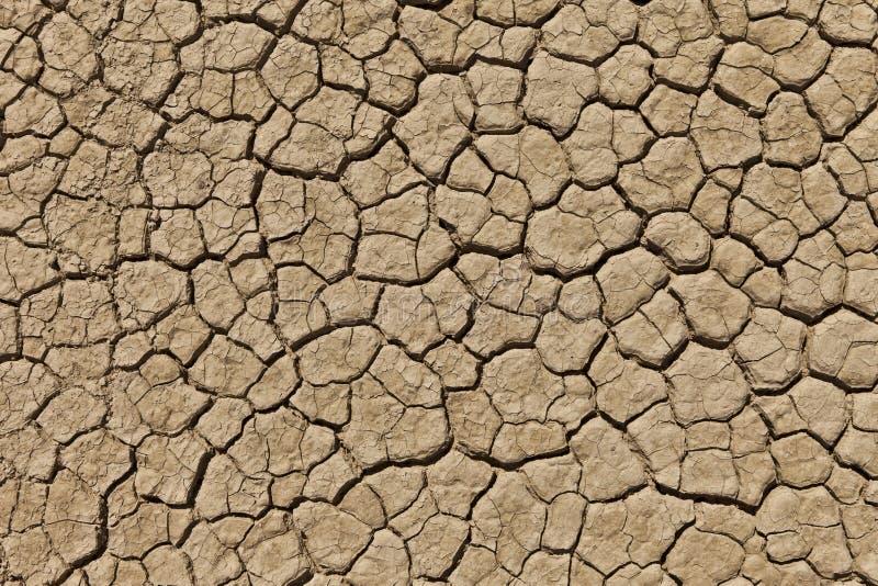 La terre criquée sèche de désert photo stock
