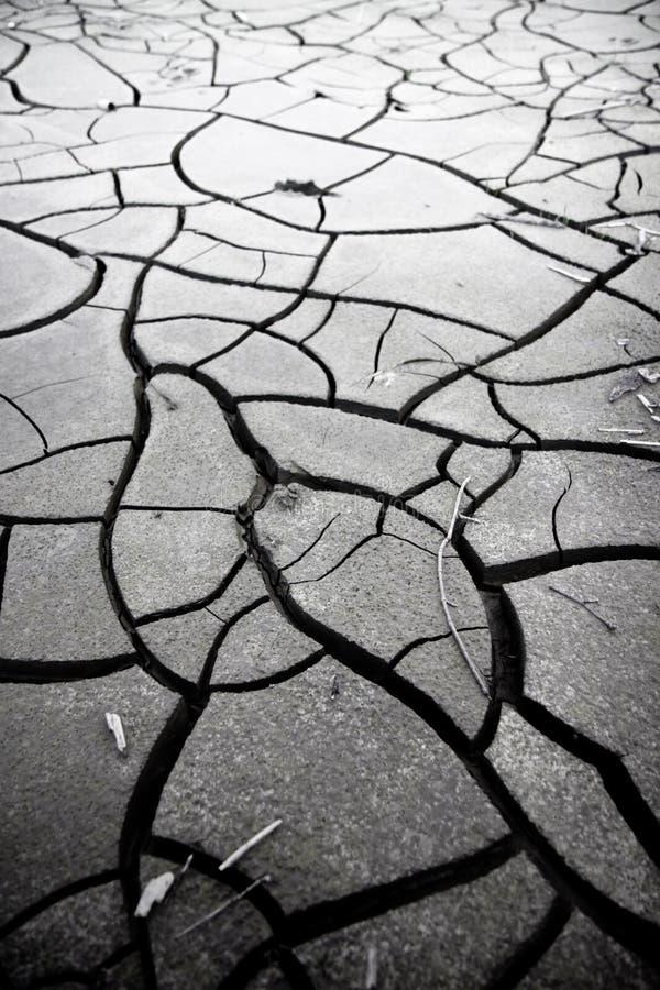 La terre criqu?e : les effets de la s?cheresse photos stock