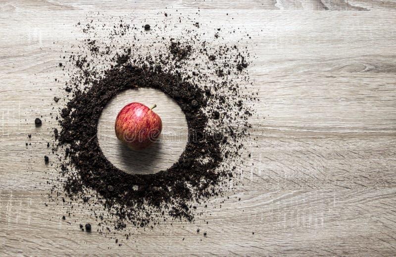La terre en bois de concept de fond a empilé le ressort de pomme de centre d'atterrissage de texture de plat de cercle horizontal photo stock
