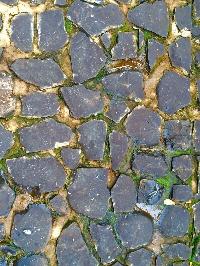 La terre en pierre photo stock