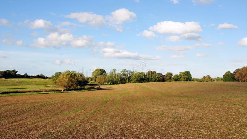 La terre nue sur des terres cultivables image stock