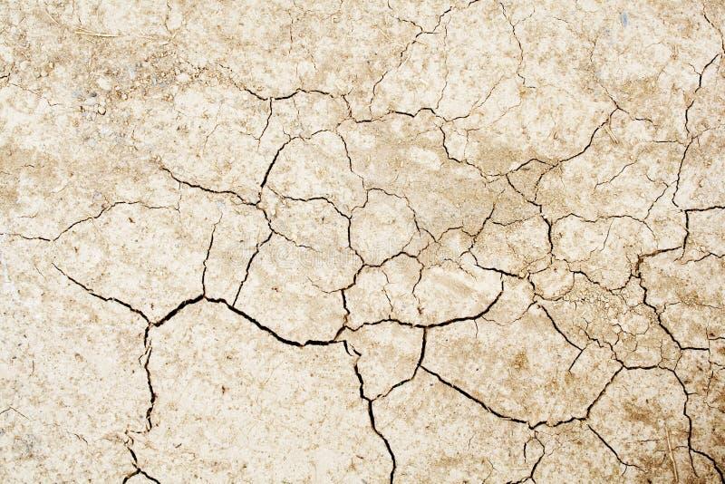 La terre sèche criquée photo libre de droits
