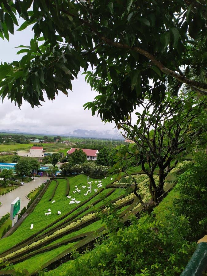 la Terre Sainte de TaPao au Vietnam image stock