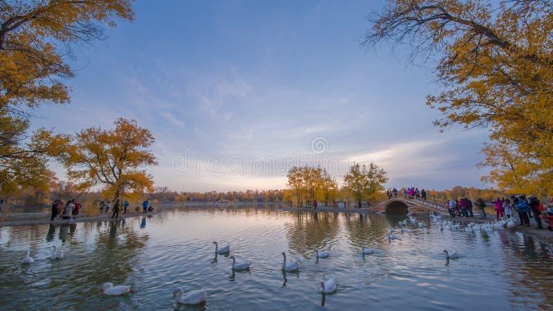 La Terre Sainte Ejina de Huyang image libre de droits