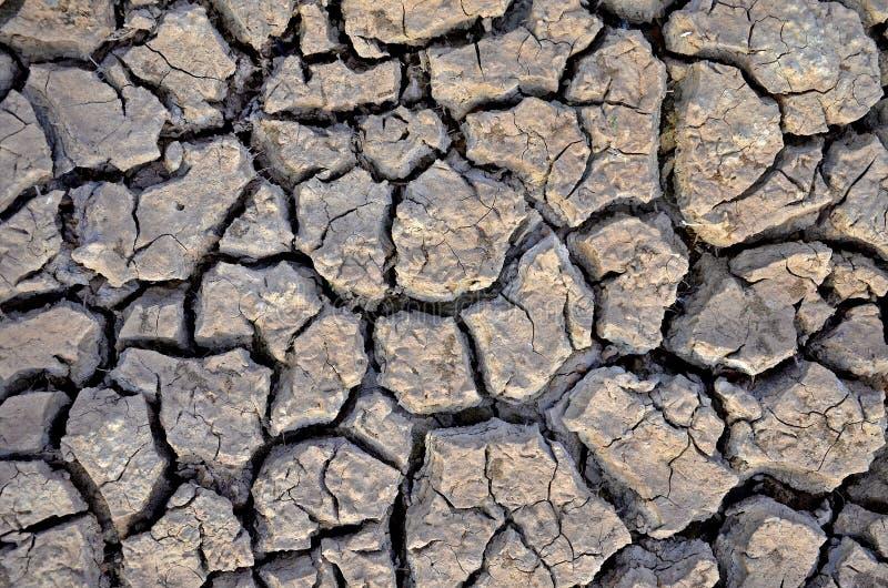 La terre stérile Séchez la terre criquée Configuration criquée de boue Sol en fissures Texture Creviced Terre de sécheresse Séche photographie stock libre de droits