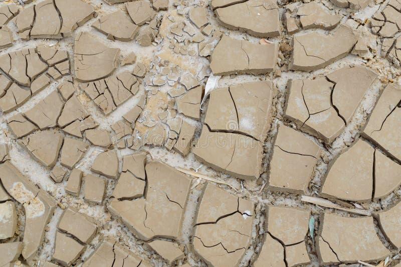 La terre stérile Séchez la terre criquée Configuration criquée de boue Sol en fissures Terre de sécheresse Texture de sécheresse  photo libre de droits