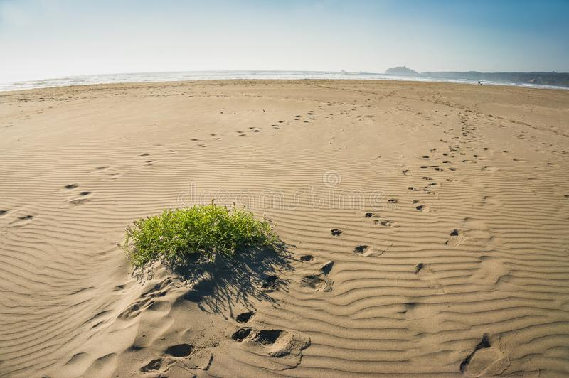 La terre vue d'un rivage d'océan photographie stock libre de droits