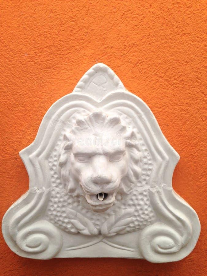 La testa di un leone immagine stock libera da diritti