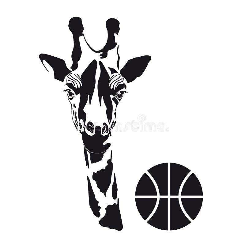 La testa di una giraffa con una palla Siluetta nera su un fondo bianco immagini stock