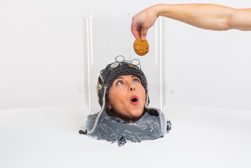 La testa femmina vede il cibo, ma non può morderlo perché è sotto un cappello trasparente Restrizioni Concettualmente immagine stock