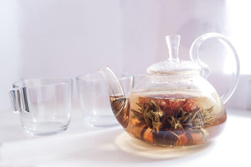 La tetera transparente llenó de té verde con las flores en un fondo blanco con una taza fotografía de archivo