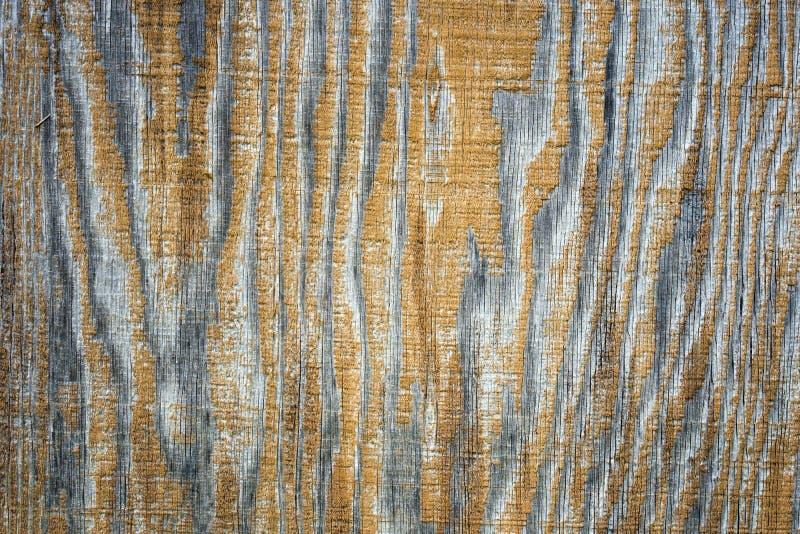La textura de la madera contrachapada de madera sol-blanqueada vieja imagenes de archivo