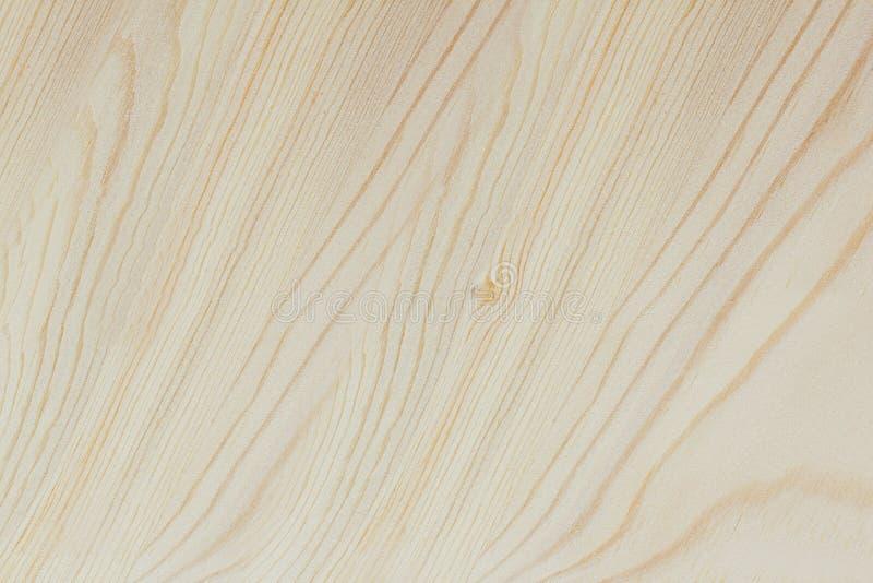 La textura de madera ligera, fondo de madera, roble fotografía de archivo