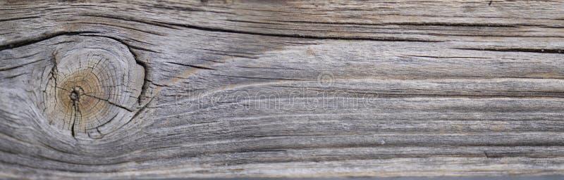 La textura de madera natural con el grano de madera hermoso puede utilizado como fondo imagen de archivo libre de regalías