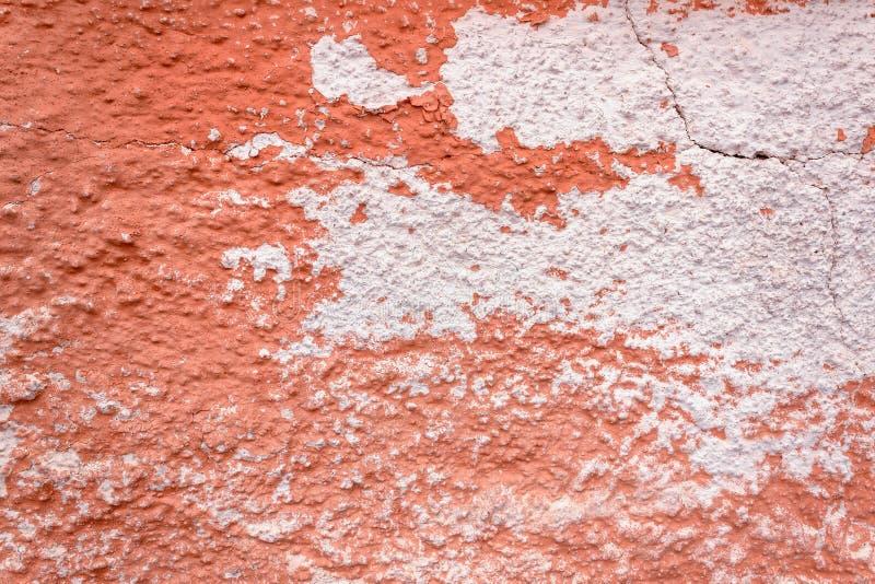 La textura de la piedra Coral, rosa Fondo natural B fotografía de archivo libre de regalías