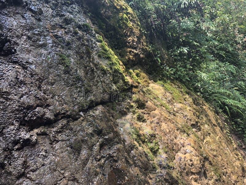 La textura de la piedra en el barranco fotografía de archivo
