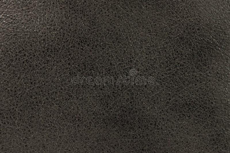 La textura de la piel es gris foto de archivo