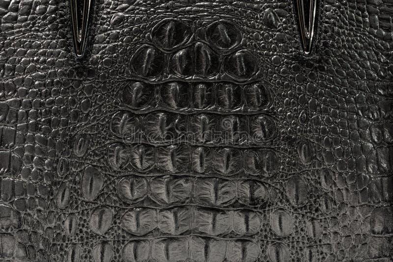 La textura de la piel es gris fotos de archivo libres de regalías