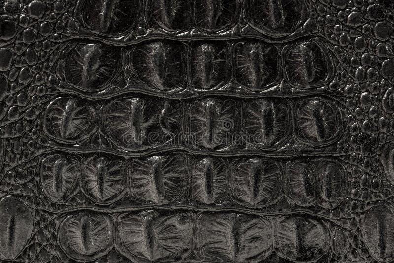 La textura de la piel es gris imagen de archivo libre de regalías