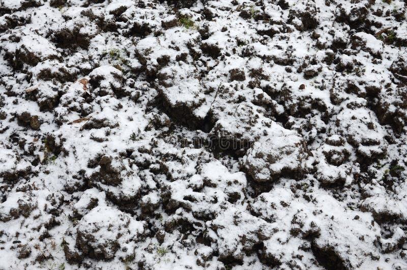 La textura de la tierra, cubierta con una capa delgada de la nieve El suelo del jardín en invierno El cierre cavado de la tierra  imagenes de archivo