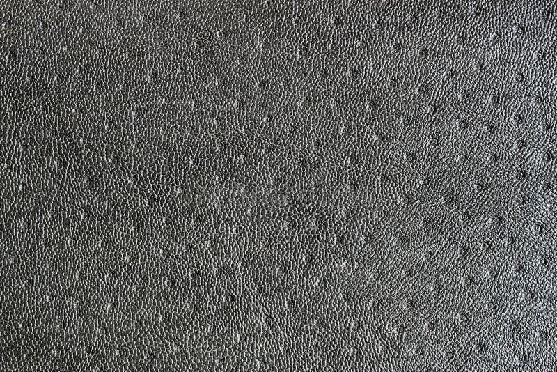 La textura del fondo onduló la superficie bajo color del gris de la piel imagen de archivo