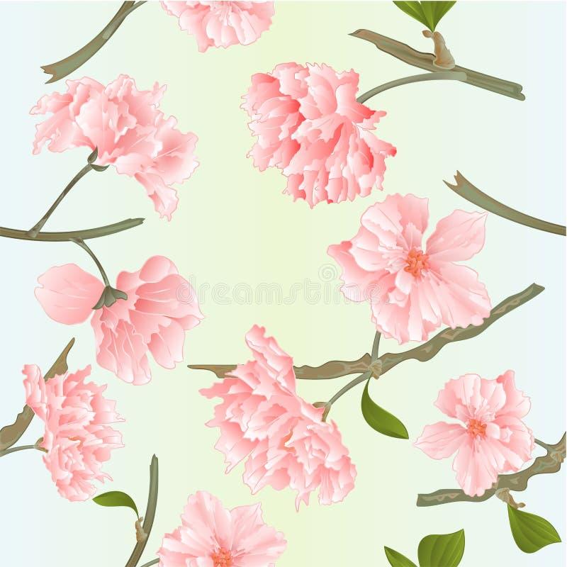 La textura inconsútil florece ejemplo del vector del vintage del fondo de la primavera natural de los tvigs de Sakura editable libre illustration
