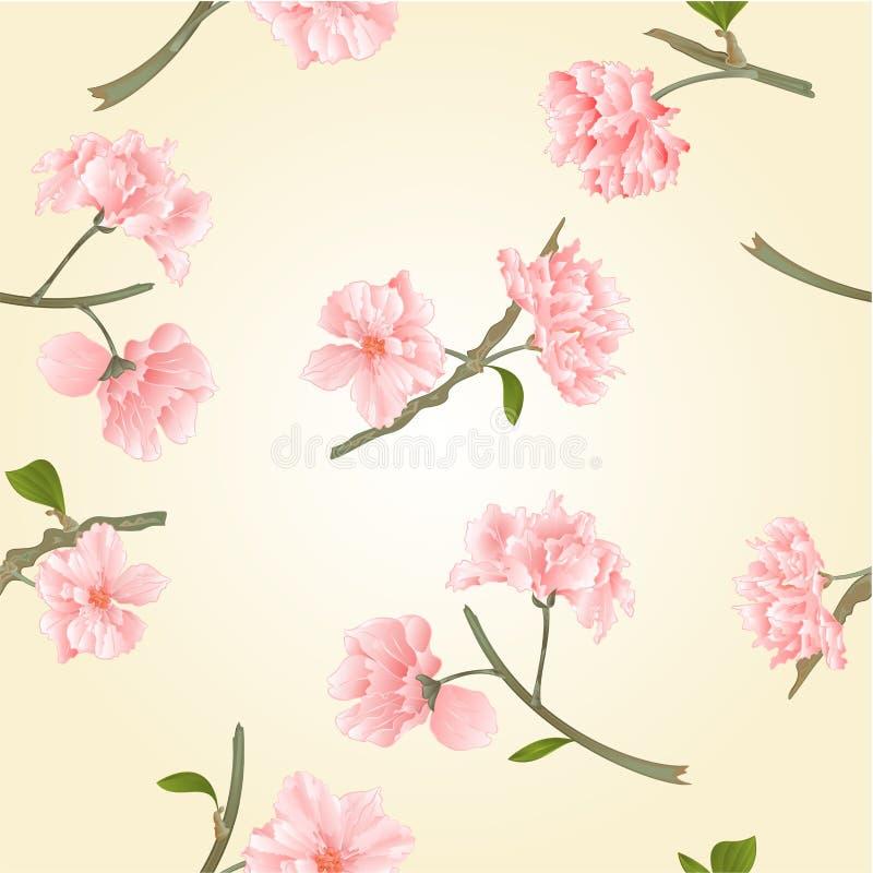 La textura inconsútil florece vector de Sakura ilustración del vector