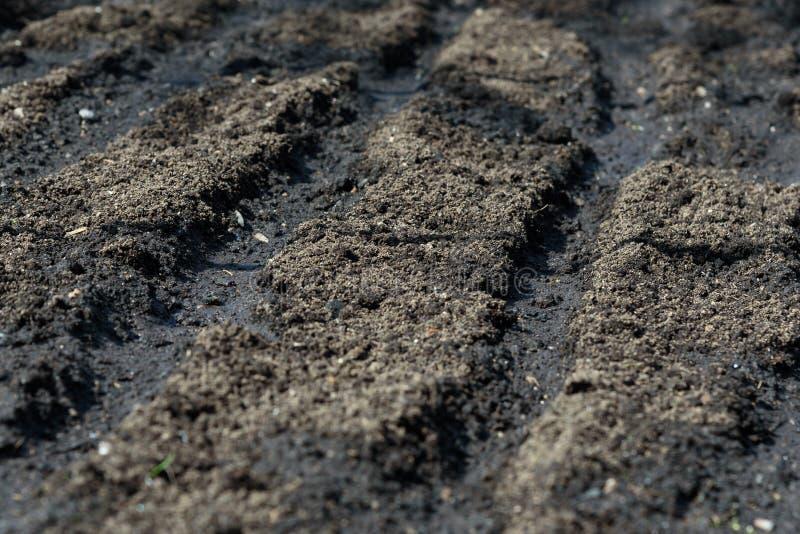 La texture de la fin de sol vers le haut de prêt pour la plantation image stock