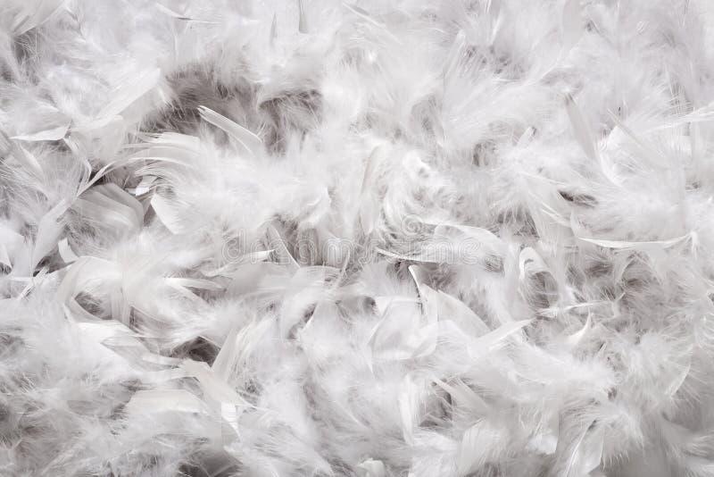 La texture de fond doucement de blanc fait varier le pas vers le bas images libres de droits
