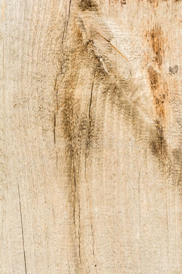 La texture de sèchent le bois criqué superficiel par les agents, fissures le long des fibres des rondins, fond abstrait en gros p photos stock