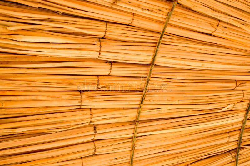 La texture des parasols naturels de belle paille du foin dans une station de vacances tropicale de désert, reposent le fond image libre de droits