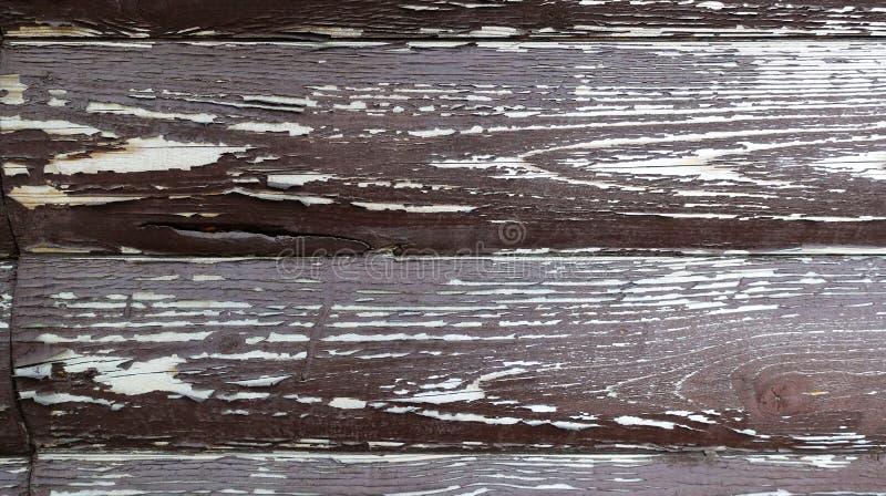 La texture du conseil avec ?plucher la peinture Fond abstrait pour la conception Brown avec les conseils arrondis blancs Panneau  image libre de droits
