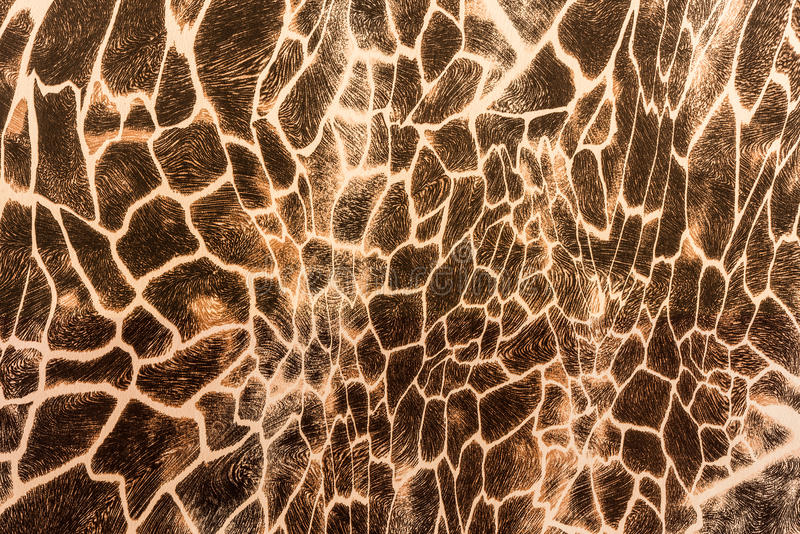 La texture du tissu d'impression barre la girafe photo stock