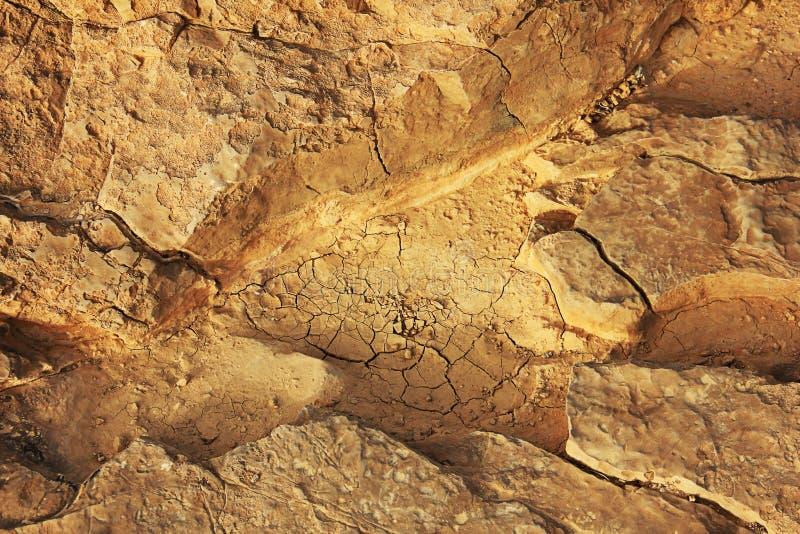 La texture en cratère de Ramon photographie stock